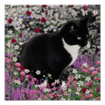 Freckles in Flowers II - Tuxedo Kitty Cat Poster