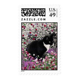 Freckles in Flowers II - Tuxedo Kitty Cat Stamp
