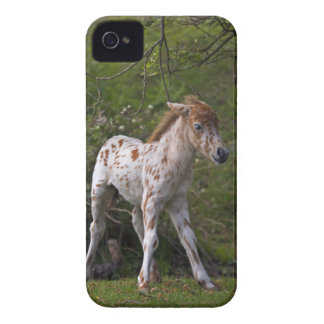 Freckles iPhone 3 Case-Mate Case