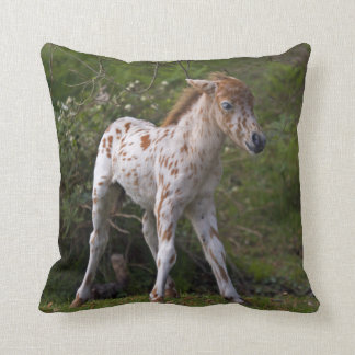 Freckles Pillow