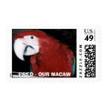 FRED 417, FRED - OUR MACAW POSTAGE