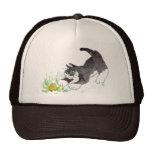 Fred, el gato, ha encontrado una cosa de lúpulo gorra