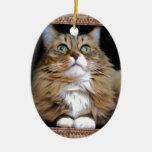 Fred el ornamento del óvalo del gato adorno para reyes