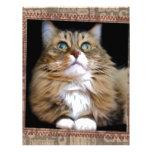 Fred el papel con membrete del gato membretes personalizados