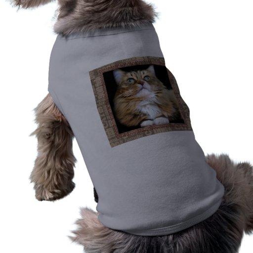 Fred la ropa del mascota del gato camisas de mascota