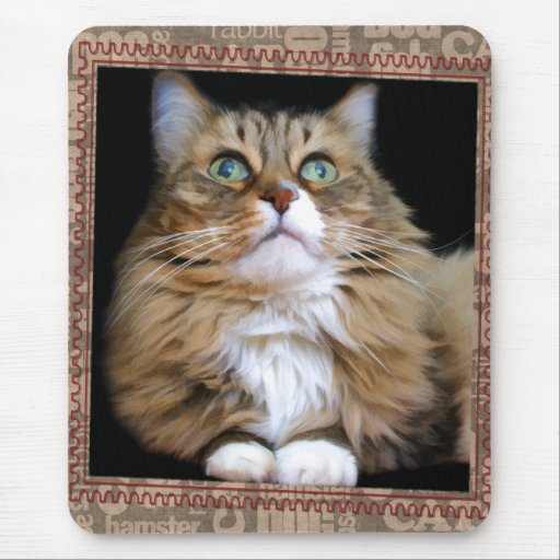 Fred the Cat Mousepad