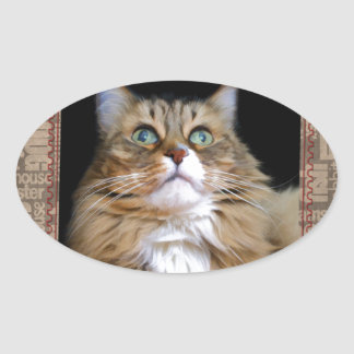 Fred the Cat Oval Sticker