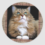 Fred the Cat Round Sticker
