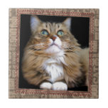 Fred the Cat Tile
