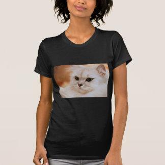 Freddie ~ Chinchilla Persians Tee Shirt