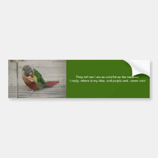 Freddy the Conure Bumper Sticker