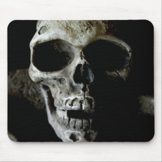 Freddys sister mouse pads