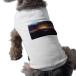 Frederic Edwin Church - After the annealing Pet Tshirt