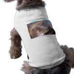 Frederic Edwin Church - Rainy season in the tropic Pet T Shirt