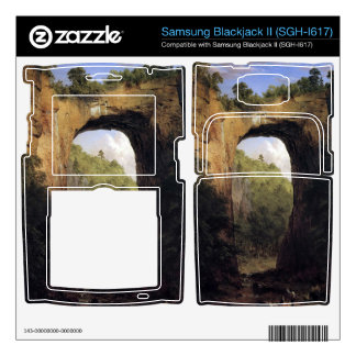 Frederic Edwin Church - The Natural Bridge Virgini Samsung Blackjack II Skin