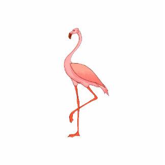 Frederick Flamingo Photo Sculptures