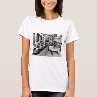 Frederick & Nelson Raindeer in the Window T-Shirt