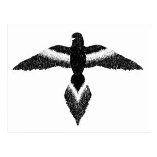 free as a bird black and white postcard