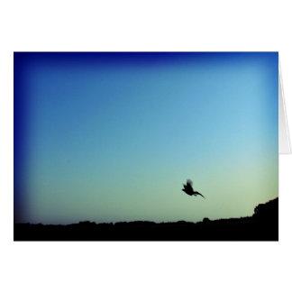 Free as a bird card