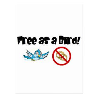 Free as a Bird! Postcard