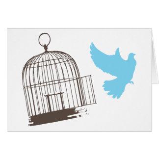 Free Bird Card