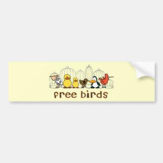 Free Birds Bumper Sticker