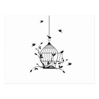 Free birds with open birdcage postcard