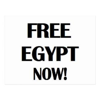 Free Egypt Now! Postcard