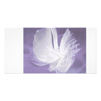 Free Falling feather on purple background Photo Card