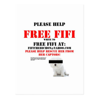 Free Fifi the Bichon Frise Postcard