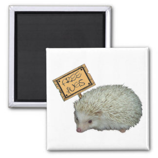 Free Hugs Hedgehog Magnet