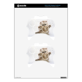 Free Hugs Kitten Xbox 360 Controller Decal