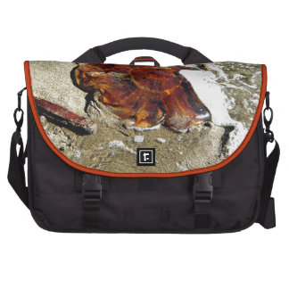Free Jelly Laptop Messenger Bag