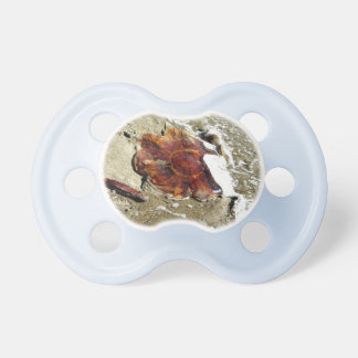 Free Jelly Pacifiers