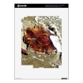 Free Jelly Skin For iPad 3