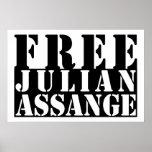 FREE JULIAN ASSANGE POSTER