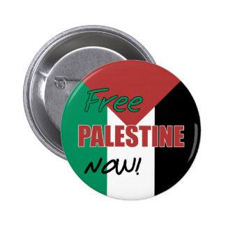 Free Palestine Now Palestinian Flag Pins