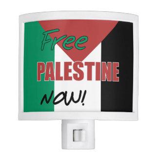 Free Palestine Now Palestinian Flag Nite Lights
