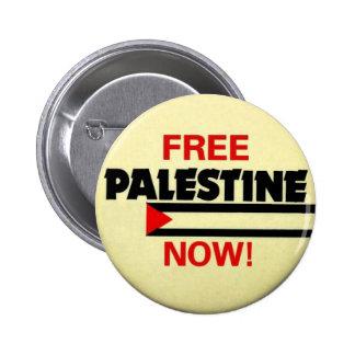 Free Palestine Pin