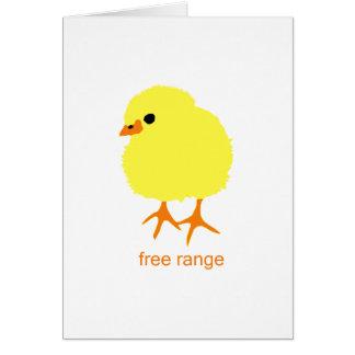 Free Range Chick Card