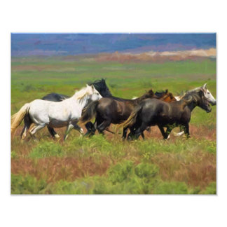 Free Spirits of the Wild Mustangs Photo Paper