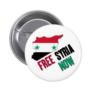 Free Syria Now Pinback Button