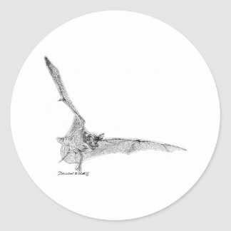 Free Tailed Bat Round Sticker