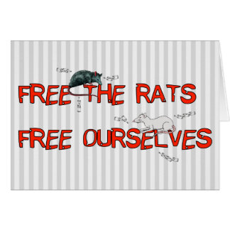 Free The Rats Card