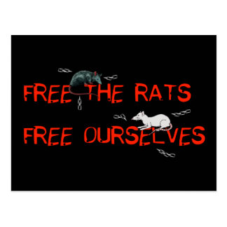 Free The Rats Postcard