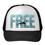 Free Tilly Blue Hat