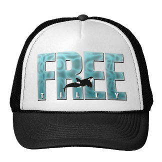 Free Tilly Blue Hat