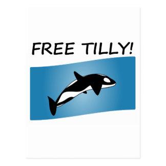 Free Tilly Postcard