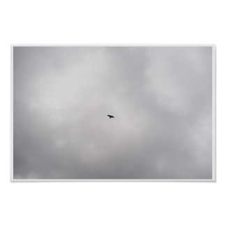 Free to Fly Poster