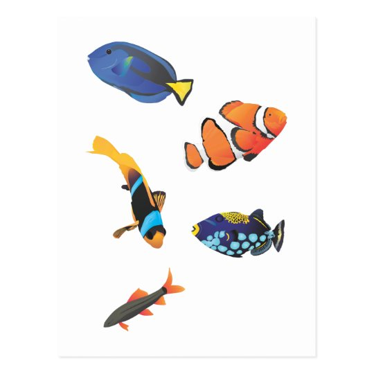 Free vector fishes.ai postcard